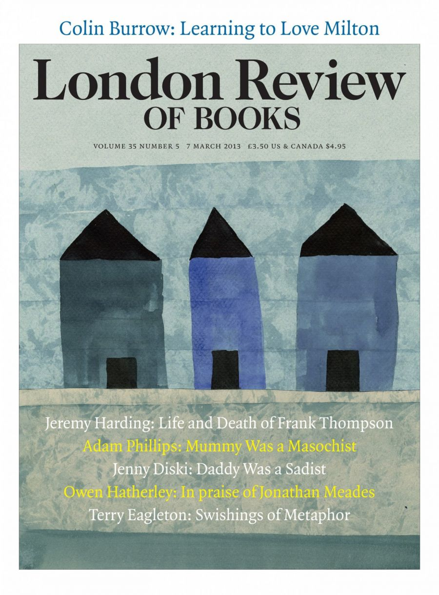 cover lrb 07 March 2013, three blue houses.